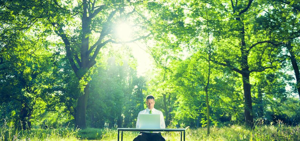 Mann im Wald am Schreibtisch